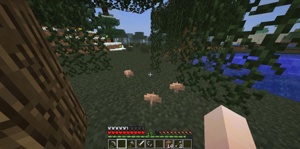 Игрок нашел грибы в биоме БОЛОТО